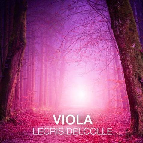 Cover Viola